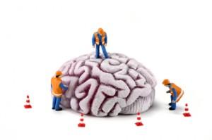 O que é Neuromarketing ?